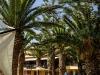 vantaris-beach-exterior0022.jpg